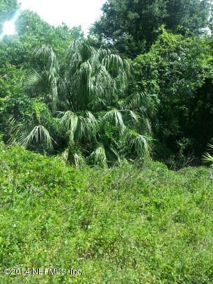 000 MC LAURIN, JACKSONVILLE, FLORIDA 32256, ,Vacant land,For sale,MC LAURIN,671850