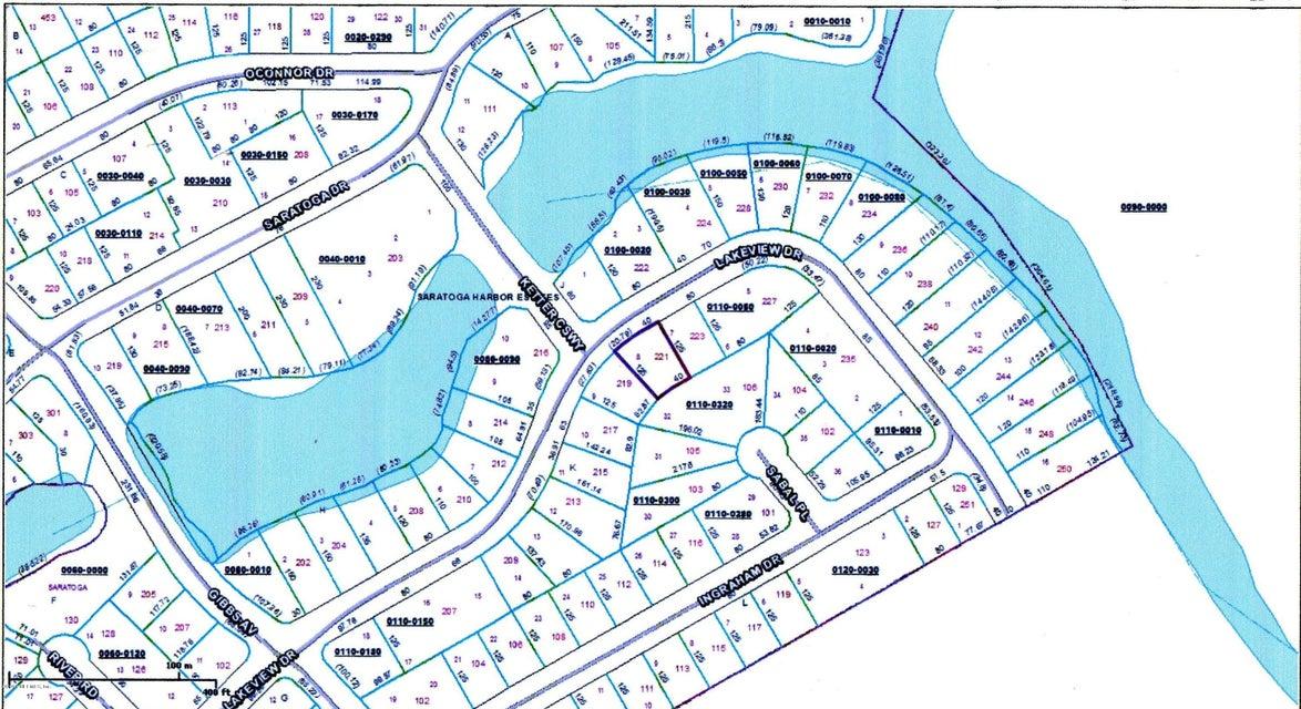221 LAKEVIEW,SATSUMA,FLORIDA 32189,Vacant land,LAKEVIEW,729552