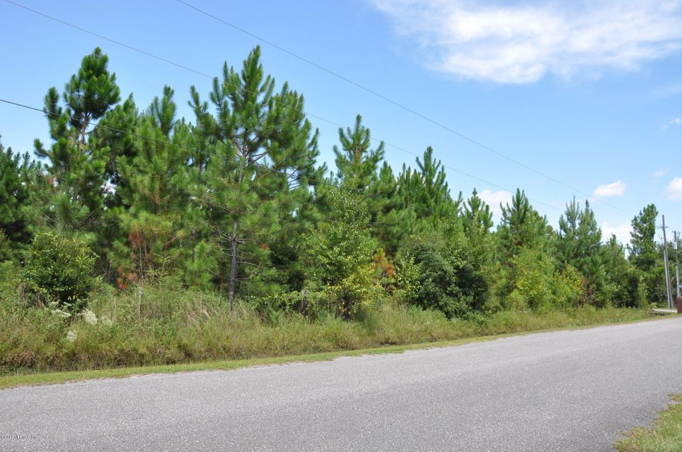 13361 JOANDALE,JACKSONVILLE,FLORIDA 32220,Vacant land,JOANDALE,733132