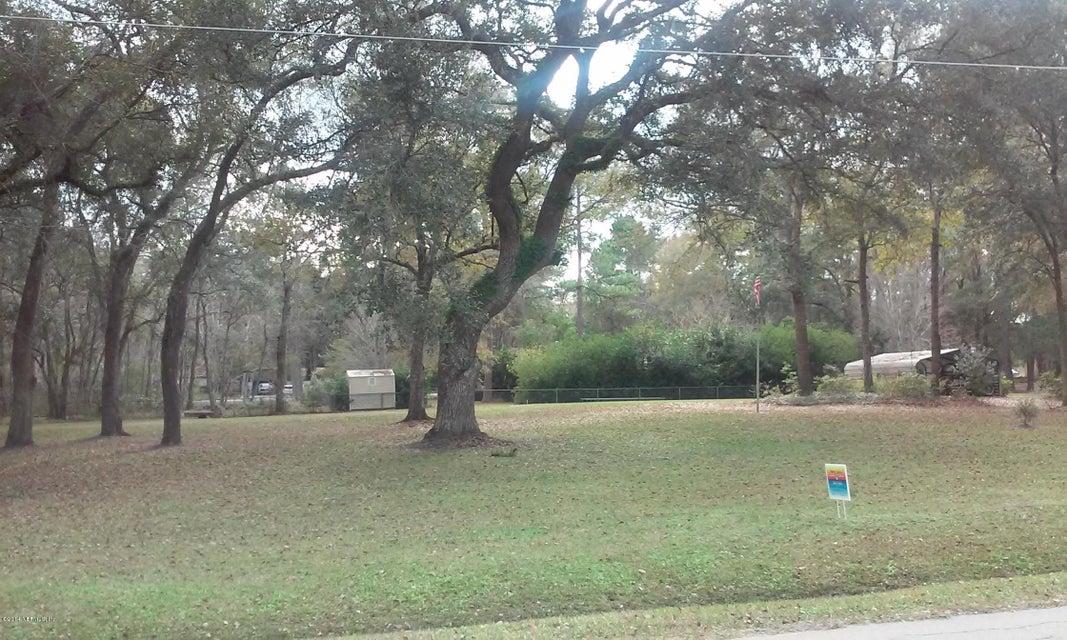 252 BAMBI, LAKE CITY, FLORIDA 32025, ,Vacant land,For sale,BAMBI,750566
