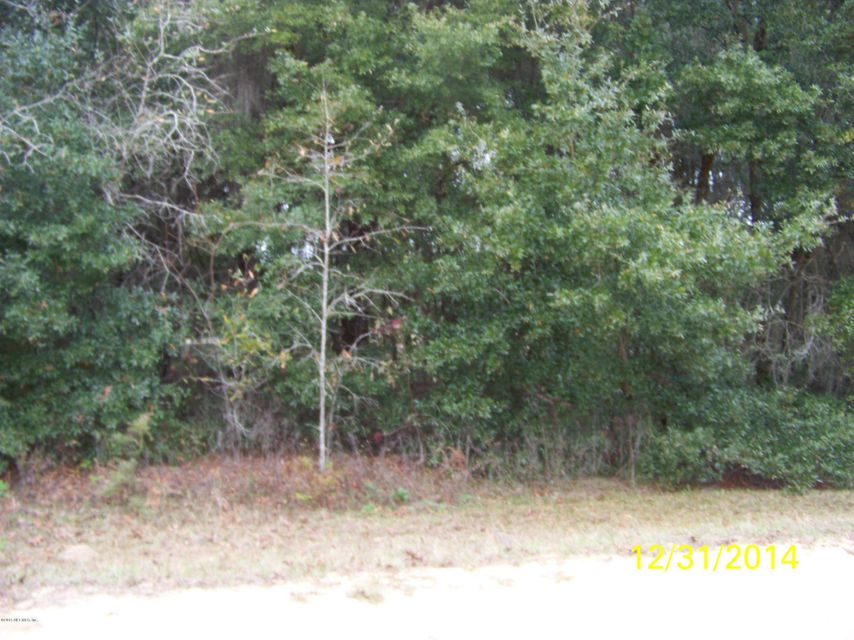 409 GUY,INTERLACHEN,FLORIDA 32148,Vacant land,GUY,750638