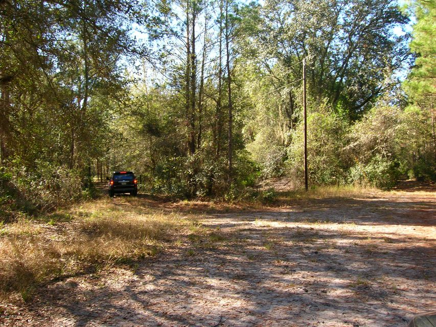 00 BRUSHY HAMMOCK, MAYO, FLORIDA 32066, ,Vacant land,For sale,BRUSHY HAMMOCK,756599