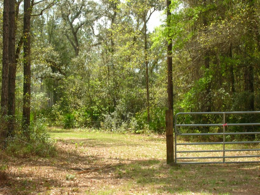 00 BRUSHY HAMMOCK,MAYO,FLORIDA 32066,Vacant land,BRUSHY HAMMOCK,756599