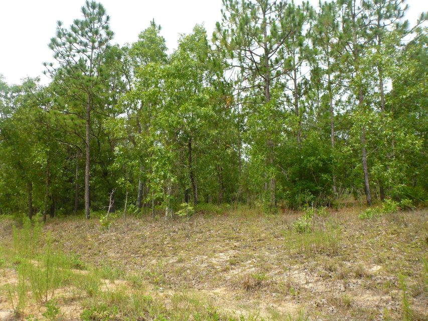 6796 FERNCREEK,KEYSTONE HEIGHTS,FLORIDA 32656,Vacant land,FERNCREEK,775270