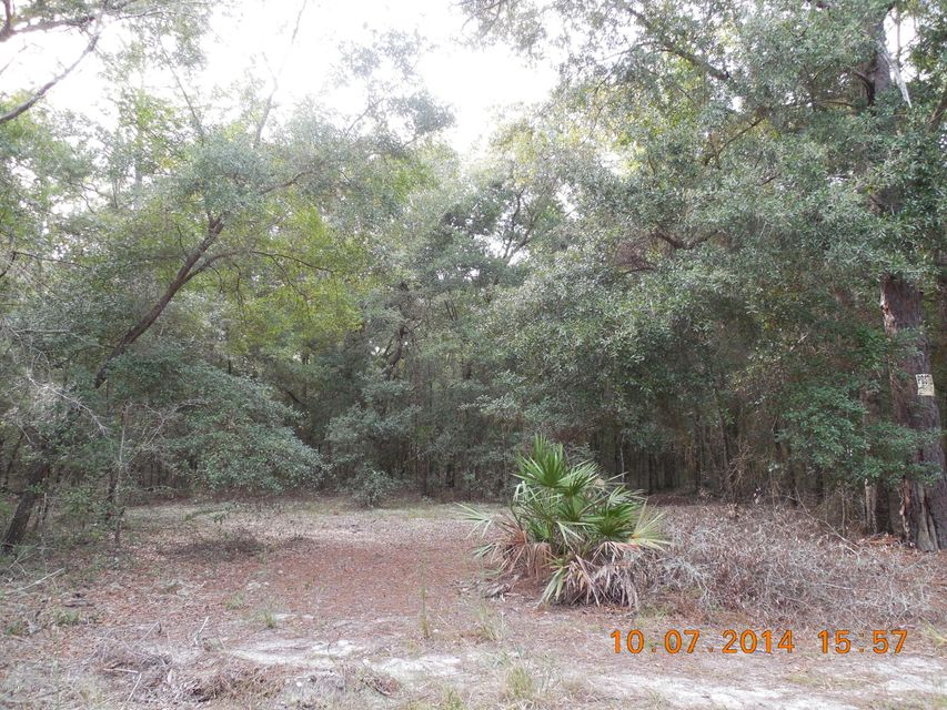 00 COUNTY ROAD 219-A,MELROSE,FLORIDA 32666,Vacant land,COUNTY ROAD 219-A,780129