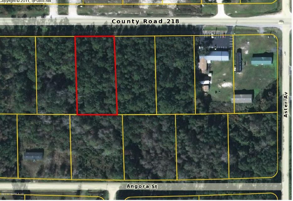 4177 COUNTY ROAD 218,MIDDLEBURG,FLORIDA 32068,Commercial,COUNTY ROAD 218,780608