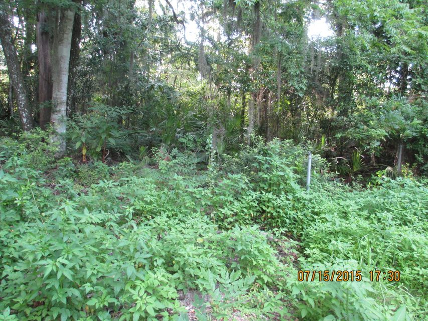 00 SCENIC,MIDDLEBURG,FLORIDA 32068,Vacant land,SCENIC,782860