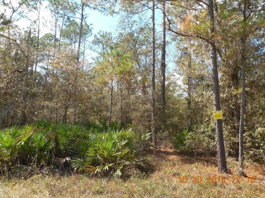 00 NE 10TH - MONTEOCHA, GAINESVILLE, FLORIDA 32609, ,Vacant land,For sale,NE 10TH - MONTEOCHA,799705