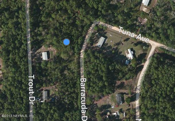 119 BARRACUDA, PALATKA, FLORIDA 32177-7383, ,Vacant land,For sale,BARRACUDA,800695