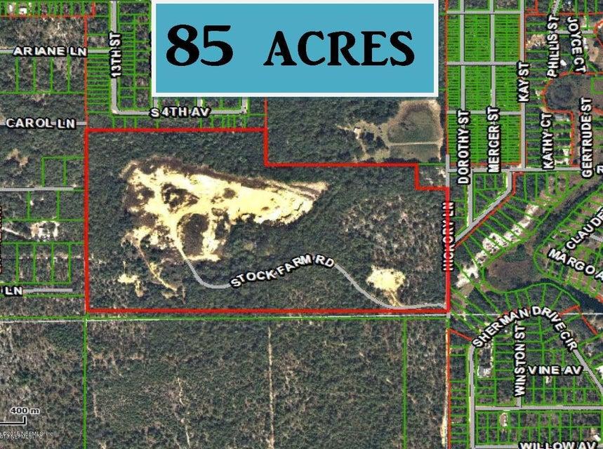 138 STOCK FARM,INTERLACHEN,FLORIDA 32148,Vacant land,STOCK FARM,669625