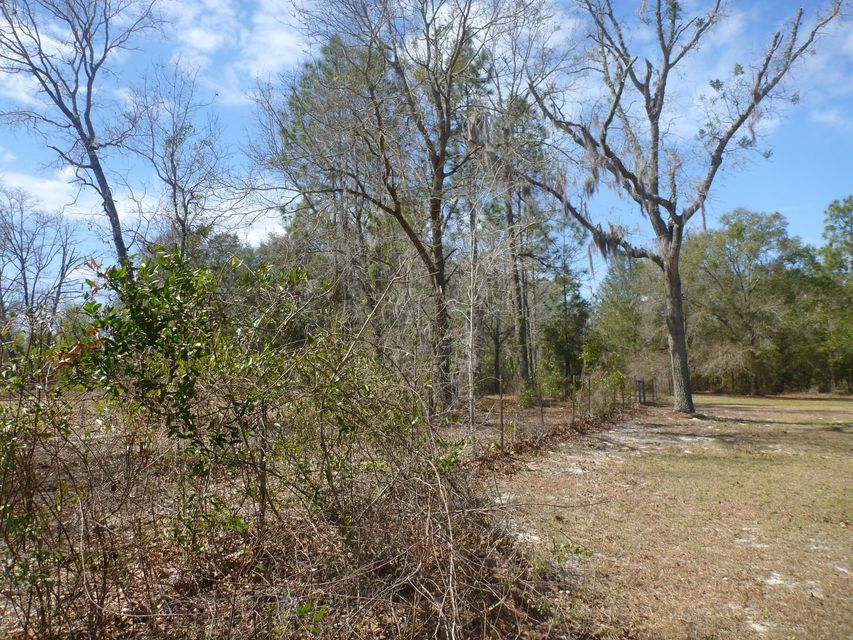 0000 SR 21, KEYSTONE HEIGHTS, FLORIDA 32656, ,Vacant land,For sale,SR 21,817484