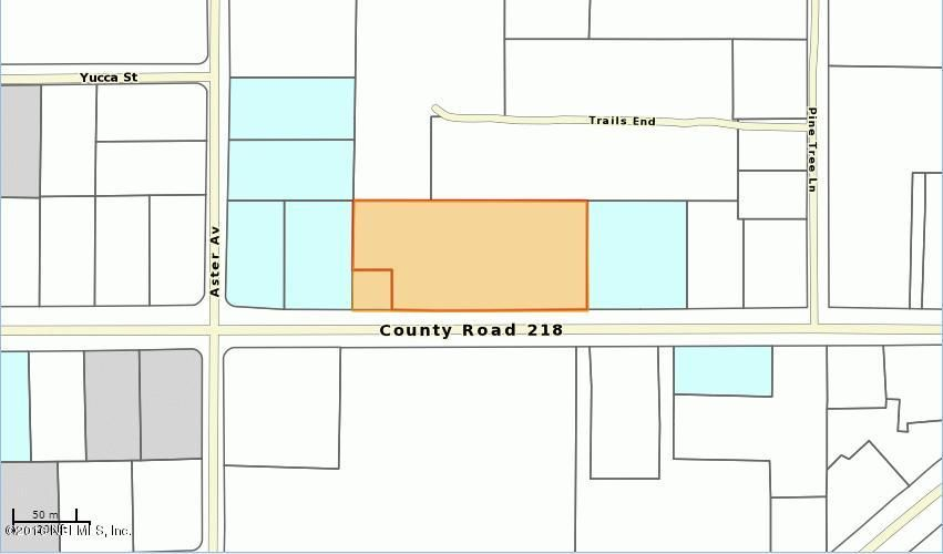 4112 CR 218, MIDDLEBURG, FLORIDA 32068, ,Vacant land,For sale,CR 218,821144