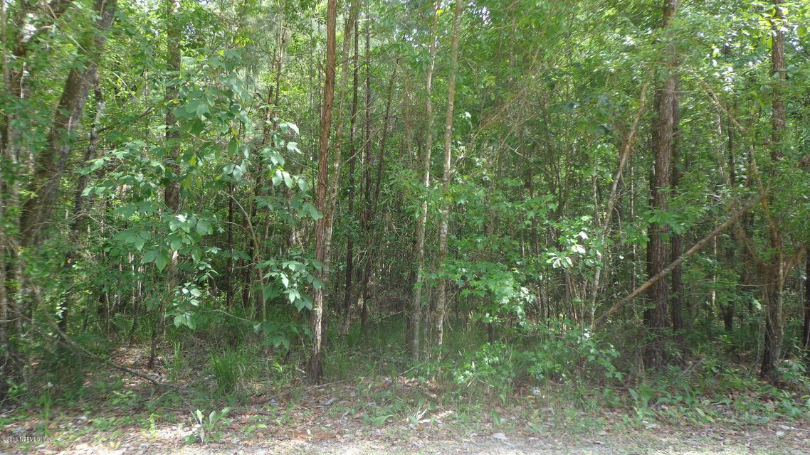 4917 CHICKPEA,MIDDLEBURG,FLORIDA 32068,Vacant land,CHICKPEA,825372