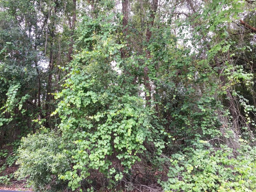 5703 CARIBBEAN,KEYSTONE HEIGHTS,FLORIDA 32656,Vacant land,CARIBBEAN,837377