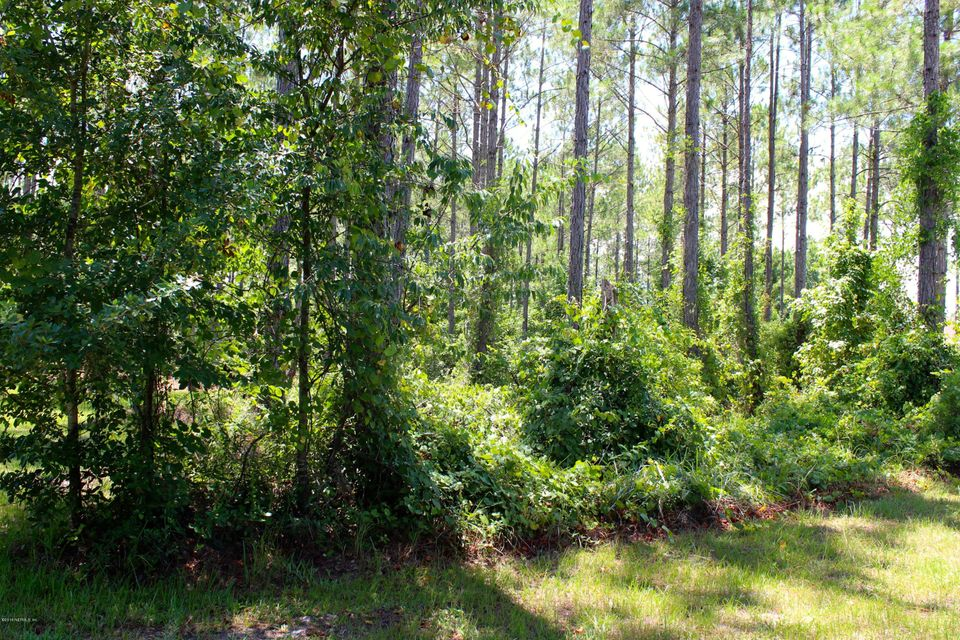 413 FRIAR TUCK,ST AUGUSTINE,FLORIDA 32092,Vacant land,FRIAR TUCK,838541