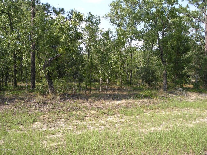 0000 RIDGE, MELROSE, FLORIDA 32666, ,Vacant land,For sale,RIDGE,761410