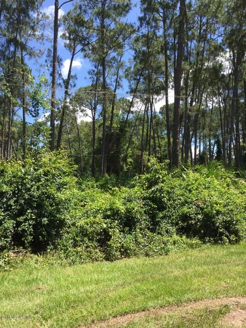 102 CAMELLIA,GEORGETOWN,FLORIDA 32139,Vacant land,CAMELLIA,839673