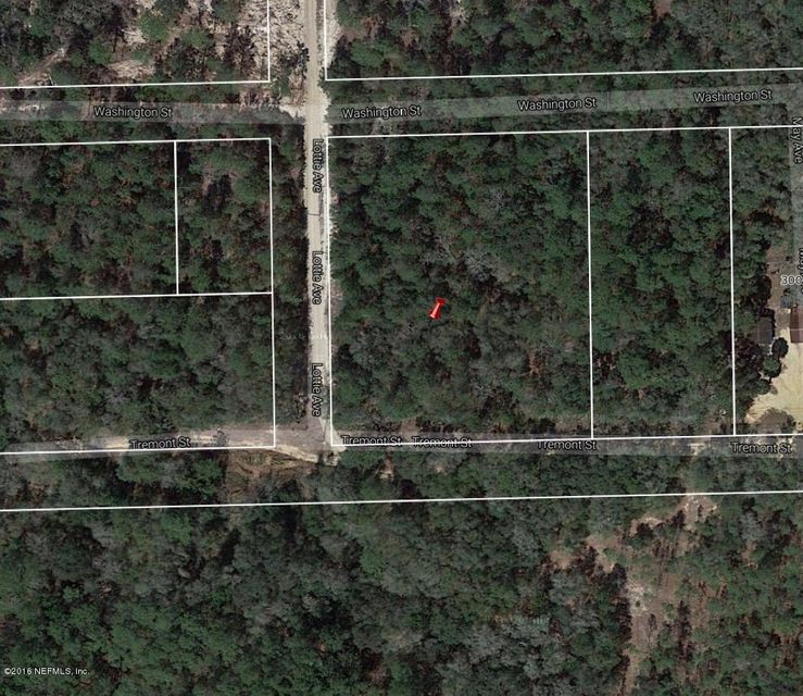 00 TREMONT,INTERLACHEN,FLORIDA 32148,Vacant land,TREMONT,843526