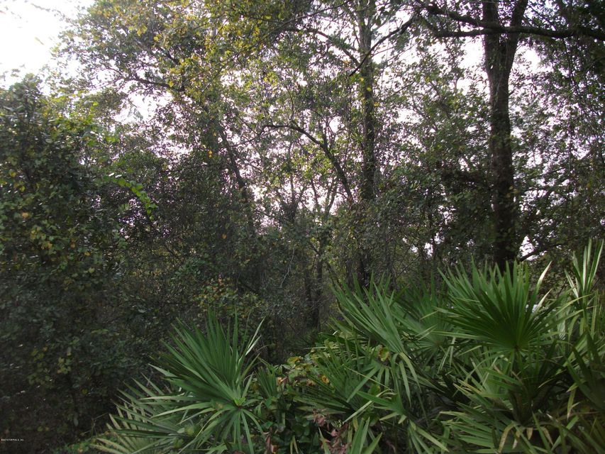 4449 BONDARENKO,KEYSTONE HEIGHTS,FLORIDA 32656,Vacant land,BONDARENKO,852940
