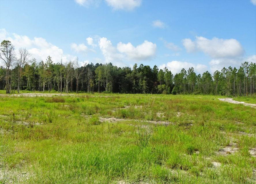 FOREST TRAIL,JACKSONVILLE,FLORIDA 32234,Vacant land,FOREST TRAIL,854513