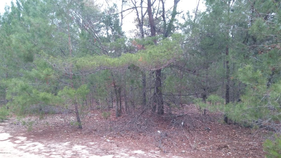 7221 CHIPOLA- KEYSTONE HEIGHTS- FLORIDA 32656, ,Vacant land,For sale,CHIPOLA,857915
