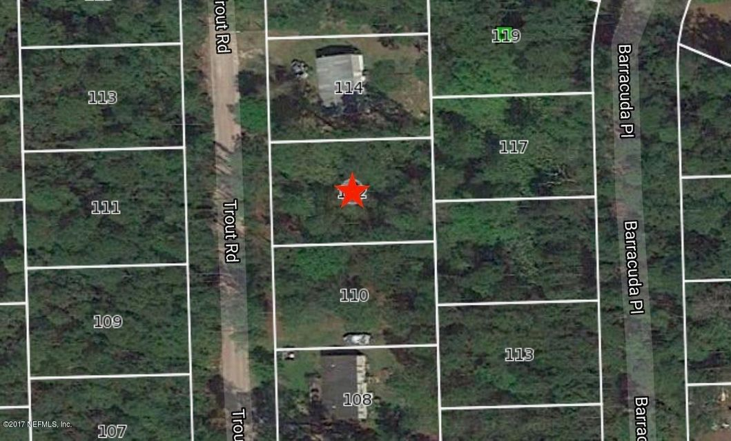 112 TROUT, PALATKA, FLORIDA 32177, ,Vacant land,For sale,TROUT,800706