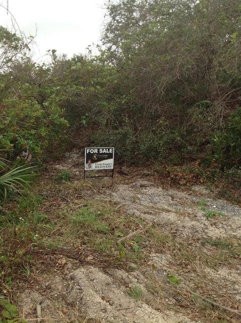 PELICAN,ST AUGUSTINE,FLORIDA 32080,Vacant land,PELICAN,909577