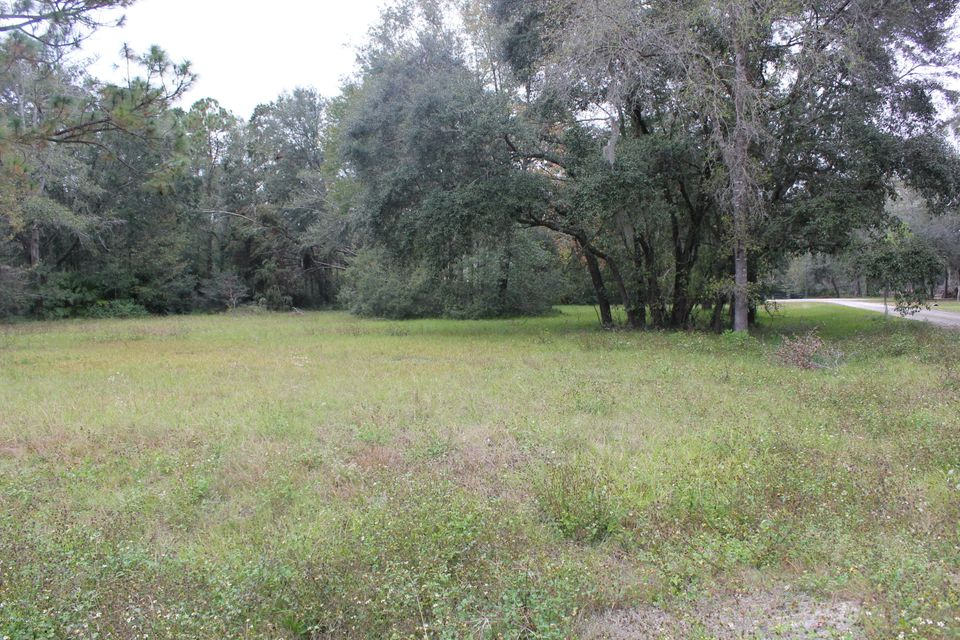 95TH,HAMPTON,FLORIDA 32044,Vacant land,95TH,909485