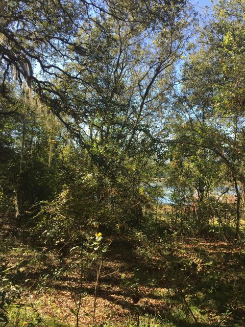 227 COOPER LAKE,INTERLACHEN,FLORIDA 32148,Vacant land,COOPER LAKE,910535