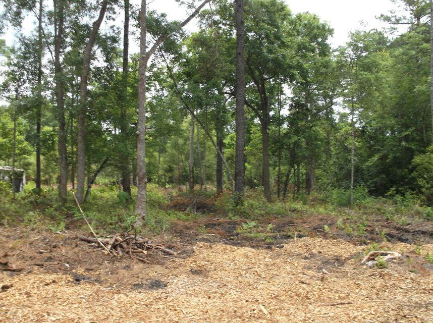 2723 PERIWINKLE,MIDDLEBURG,FLORIDA 32068,Vacant land,PERIWINKLE,915825