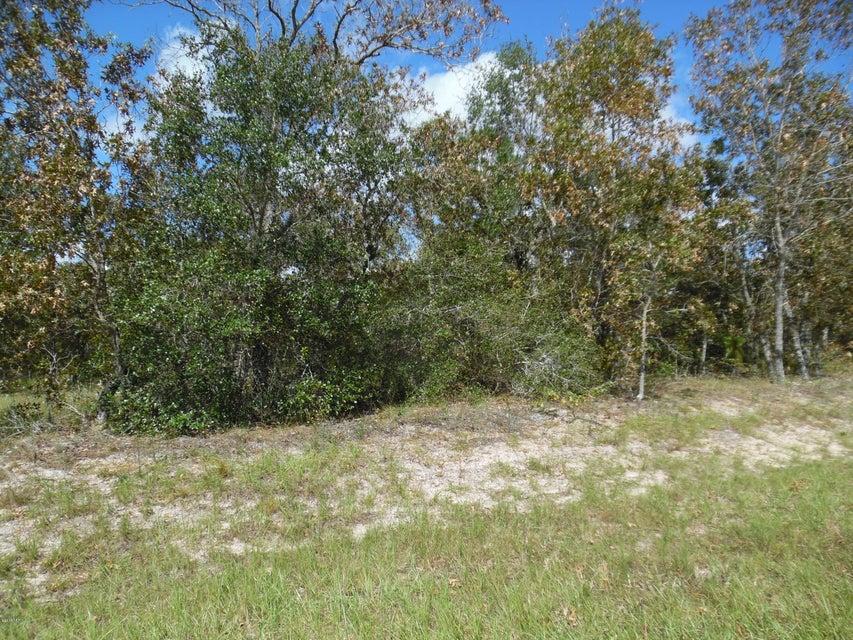 7580 GRAND MESA,KEYSTONE HEIGHTS,FLORIDA 32656,Vacant land,GRAND MESA,915831