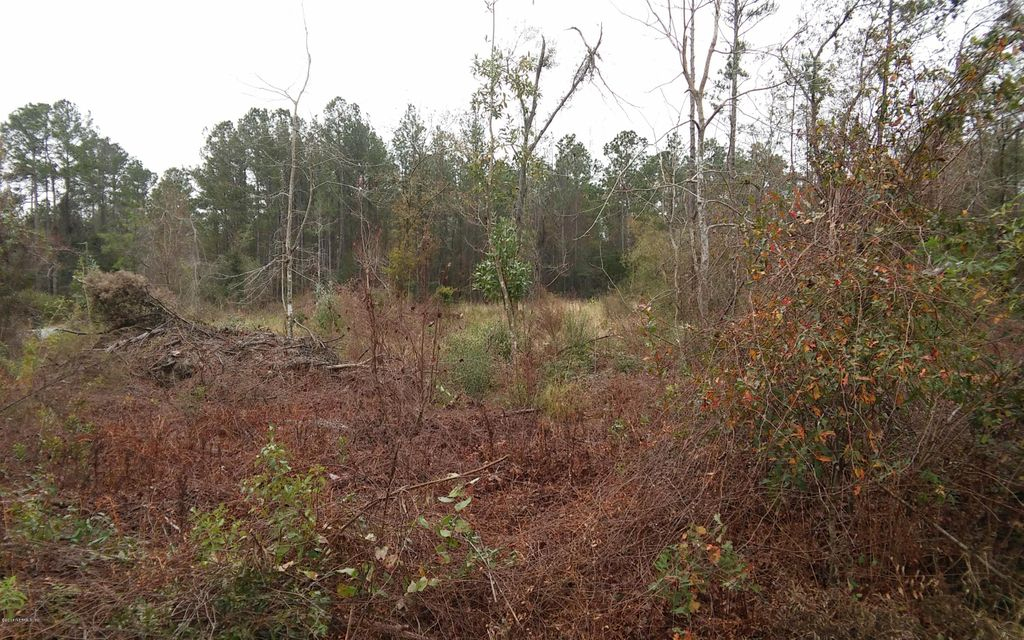 LAKE,STARKE,FLORIDA 32091,Vacant land,LAKE,760970