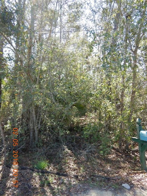 BANGKOK, INTERLACHEN, FLORIDA 32148, ,Vacant land,For sale,BANGKOK,920548