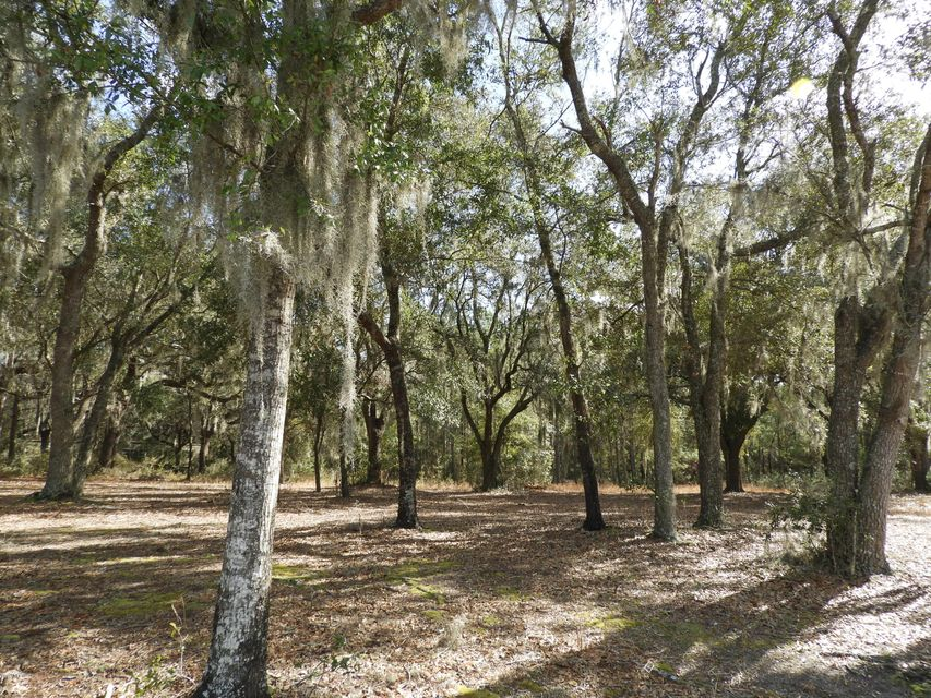 00 COUNTY ROAD 315C,KEYSTONE HEIGHTS,FLORIDA 32656,Vacant land,COUNTY ROAD 315C,920792