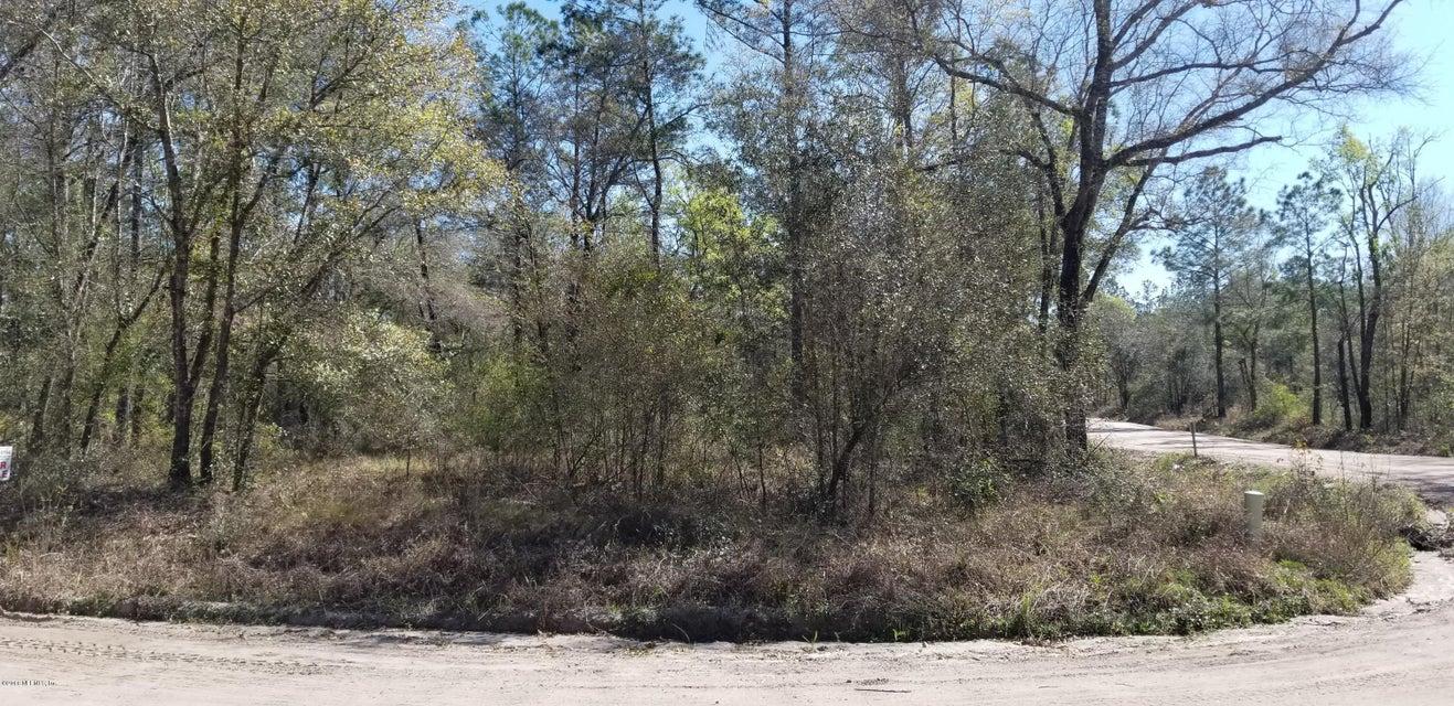 NELSON,HILLIARD,FLORIDA 32046,Vacant land,NELSON,925622