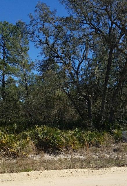 159 NETTLES,FLORAHOME,FLORIDA 32140,Vacant land,NETTLES,925983