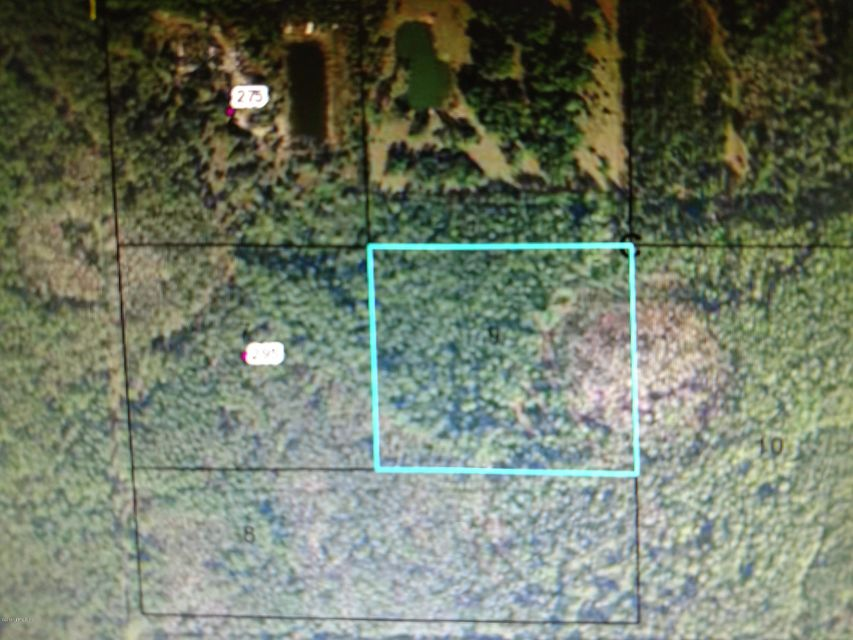 OFF S OLD DIXIE HIGHWAY,BUNNELL,FLORIDA 32110,Vacant land,S OLD DIXIE HIGHWAY,926460