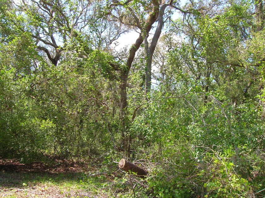105 GRANDE, SATSUMA, FLORIDA 32189, ,Vacant land,For sale,GRANDE,930894