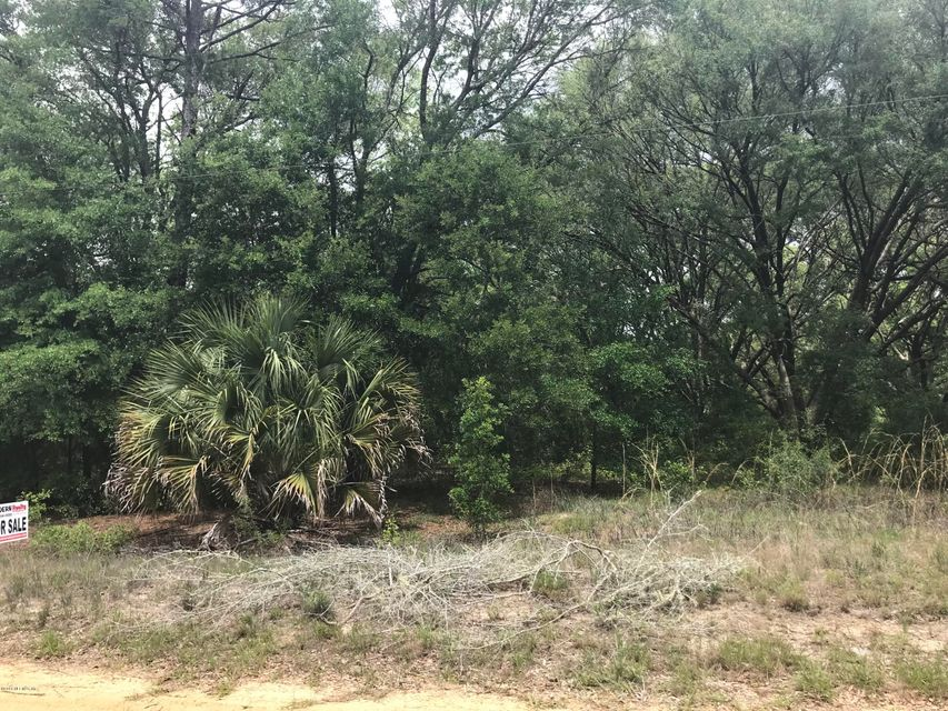 LUTHER,INTERLACHEN,FLORIDA 32148,Vacant land,LUTHER,932458