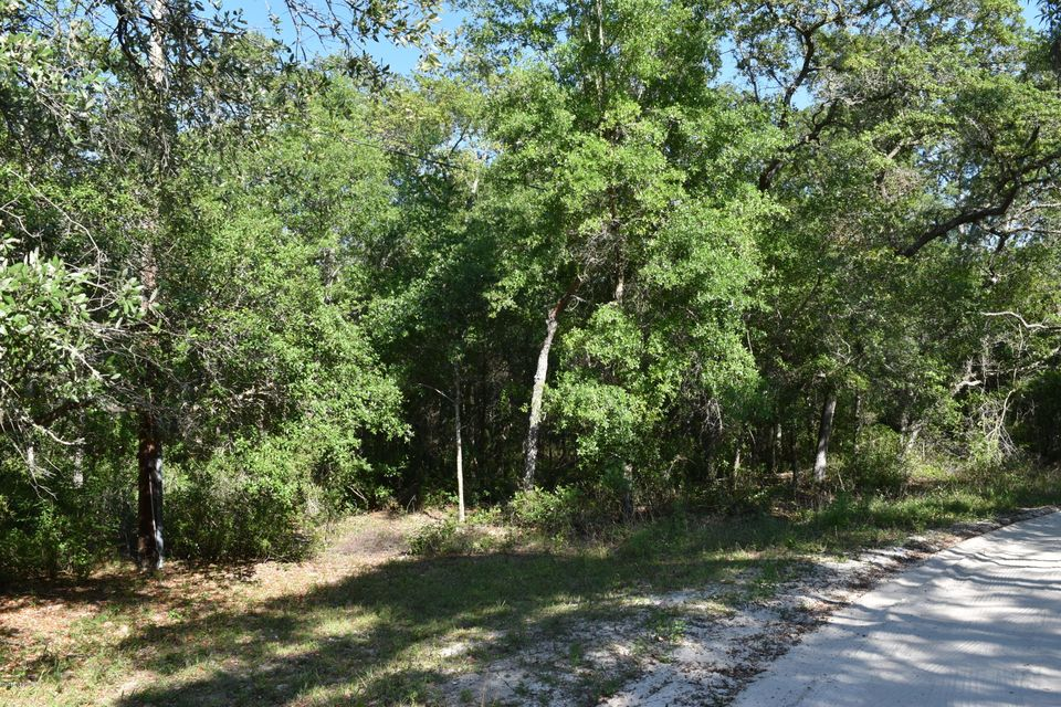 104 SAND LAKE,POMONA PARK,FLORIDA 32181,Vacant land,SAND LAKE,936853