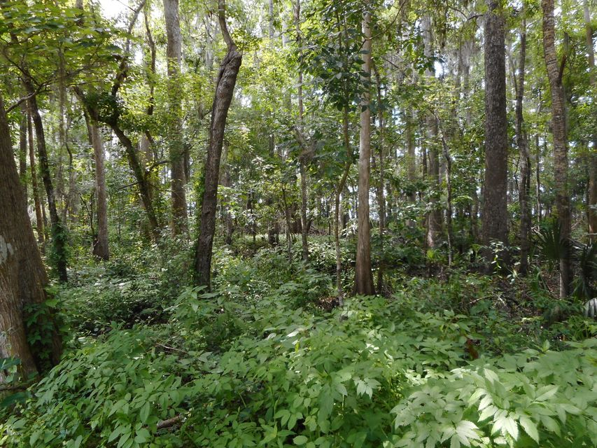 860 WORTH,FRUIT COVE,FLORIDA 32259,Vacant land,WORTH,936965