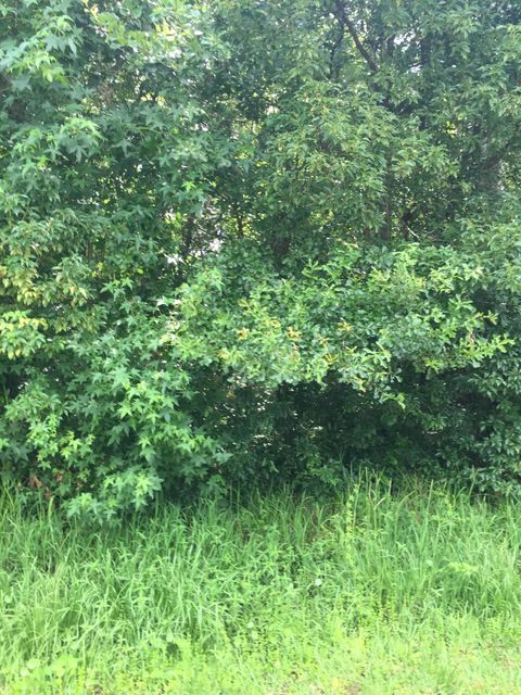 0 ROBERTS, GREEN COVE SPRINGS, FLORIDA 32043, ,Vacant land,For sale,ROBERTS,941463