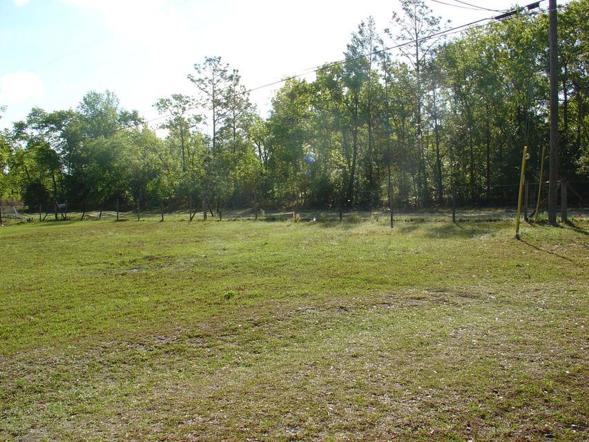 179 PEPPERMINT,MIDDLEBURG,FLORIDA 32068,Vacant land,PEPPERMINT,942161