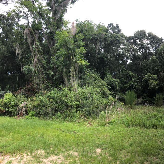 STATE ROAD 16,STARKE,FLORIDA 32091,Vacant land,STATE ROAD 16,946873