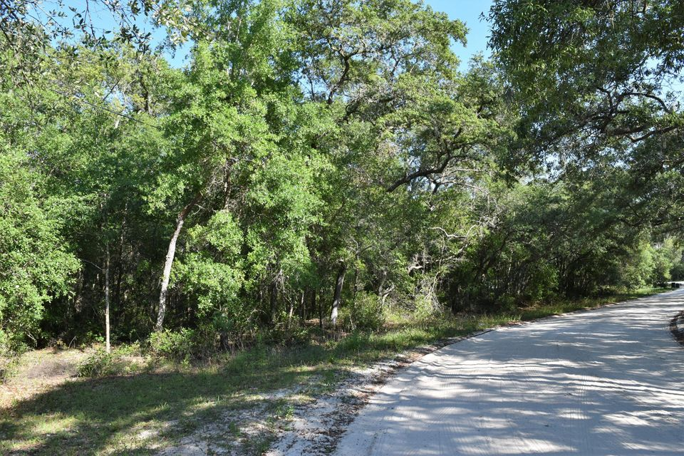 104 SAND LAKE- POMONA PARK- FLORIDA 32181, ,Vacant land,For sale,SAND LAKE,936853