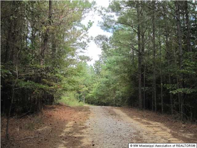 230 County Road 106 Abbeville, MS 38601 - MLS #: 299286