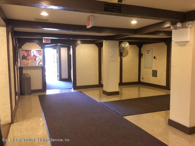 Condo 2 Elmwood Park Drive 222  Staten Island, NY 10314, MLS-1108840-29