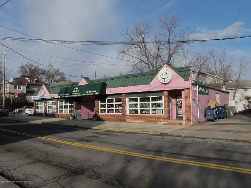 Commercial 249 Nelson Avenue  Staten Island, NY 10308, MLS-1109659-3