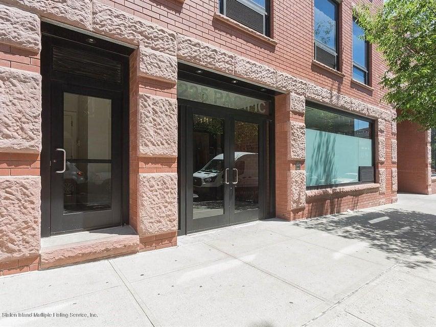 Condo 225 Pacific Street 4c  Brooklyn, NY 11201, MLS-1111354-2