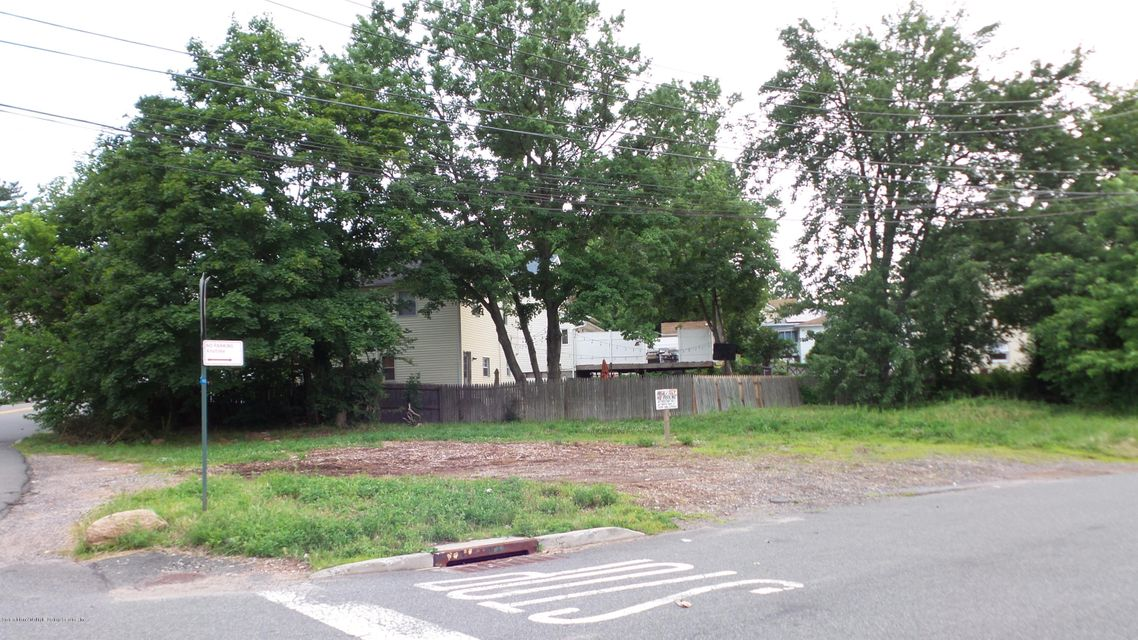 Additional photo for property listing at 0 Annadale Road  Staten Island, New York 10312 United States
